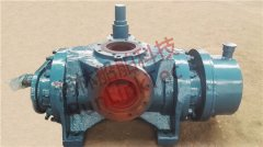 卧式螺杆泵 Horizontal Screw Pump